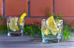 Alcoholic drink with lemon and ice Stock Photography