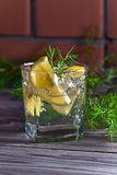Alcoholic drink with lemon and ice Royalty Free Stock Photography