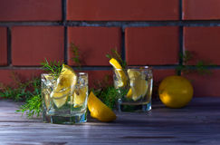 Alcoholic drink with lemon and ice Stock Images