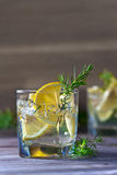 Alcoholic drink with lemon and ice Royalty Free Stock Images