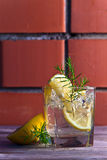 Alcoholic drink with lemon and ice Royalty Free Stock Image