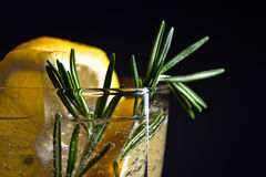 Alcoholic drink with tonic, lemon and rosemary Stock Photography