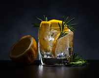 Alcoholic drink with tonic, lemon and rosemary Stock Image
