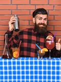 Alcoholic drinks concept. Man in checkered shirt on brick wall background prepares drinks. Barman with long beard and. Mustache and stylish hair on happy face Stock Photography