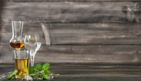 Alcoholic Drinks ice mint leaves Food beverages. Alcoholic Drinks with ice and mint leaves on wooden background. Aperitif, whiskey, gin, rum, vodka. Food royalty free stock photo