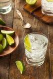 Alcoholic Gin and Tonic Royalty Free Stock Photo