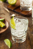Alcoholic Gin and Tonic Royalty Free Stock Images