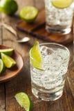 Alcoholic Gin and Tonic Stock Photo