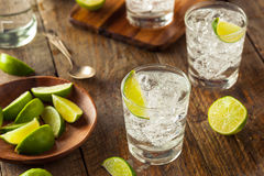Alcoholic Gin and Tonic Royalty Free Stock Image