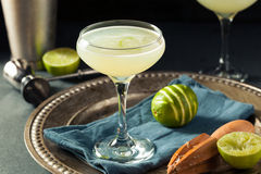Alcoholic Lime and Gin Gimlet Royalty Free Stock Images