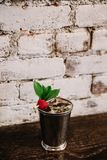 A mint julep cocktail against white background garnished with raspberries. An alcoholic mixed cocktail garnished with mint and raspberries against white brick stock images