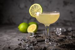 Alcoholic or non-alcoholic cocktail with lemon citrus and ginger with added liqueur, vodka, champagne or martini. Cool drink. Easy Bartenders Recipes and Ideas royalty free stock photo