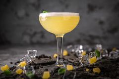 Alcoholic or non-alcoholic cocktail with lemon citrus and ginger with added liqueur, vodka, champagne or martini. Cool drink. Easy Bartenders Recipes and Ideas royalty free stock image