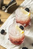 Alcoholisch Blackberry Gin Bramble Cocktail stock fotografie