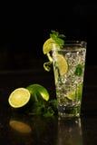 Alcool de cocktail de Mojito Images libres de droits