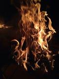 Alcoolici di fuoco Immagine Stock