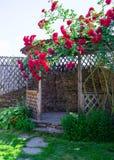 A alcova no jardim do verão com as flores bonitas da escalada aumentou Foto de Stock Royalty Free