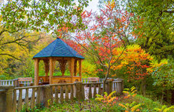 Alcove in the autumn garden Royalty Free Stock Image