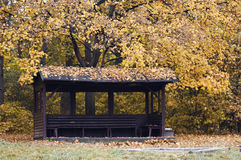 Alcove in the autumn park Royalty Free Stock Photos