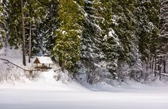 Alcove in snowy spruce forest. Lovely winter scenery Royalty Free Stock Photo