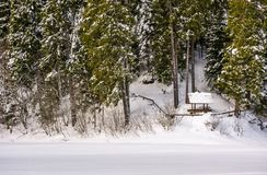 Alcove in snowy spruce forest. Lovely winter scenery Royalty Free Stock Photography