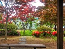 Alcove. Warm autumn, warm colors and flowers Stock Photos