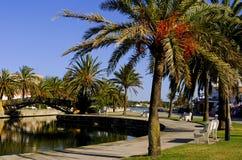 alcudia majorca Mallorca Zdjęcia Royalty Free
