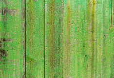 Alcudia Old Town aged green door wood texture Stock Image