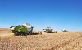 Alcune associazioni che tagliano una banda attraverso il mezzo di un giacimento di grano durante il raccolto Fotografie Stock Libere da Diritti