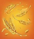 Alcune orecchie di grano su uno schizzo beige di vettore del disegno della mano del fondo illustrazione vettoriale