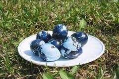 Alcune uova di Pasqua colorate sul piatto bianco, sul prato inglese verde Fotografia Stock Libera da Diritti
