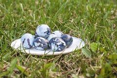 Alcune uova di Pasqua colorate sul piatto, sul prato inglese verde Immagini Stock Libere da Diritti