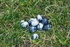 Alcune uova di Pasqua colorate sul prato inglese verde Fotografie Stock Libere da Diritti