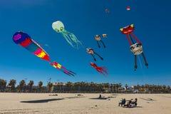 Alcuni aquiloni variopinti che volano sulla spiaggia immagini stock