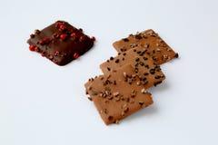 Alcuni biscotti del cioccolato Fotografia Stock