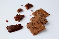 Alcuni biscotti del cioccolato Immagine Stock