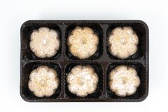 Alcuni biscotti fotografia stock