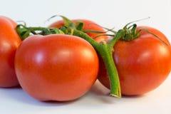 Alcuni pomodori rossi della vite Fotografie Stock