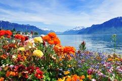 Цветки, озеро ald гор Стоковое Изображение RF