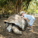 Aldabra giant tortoise and child Royalty Free Stock Image