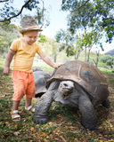 Aldabra giant tortoise and child Royalty Free Stock Photos