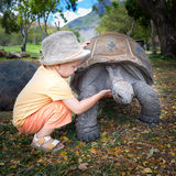 Aldabra giant tortoise and child Royalty Free Stock Photography