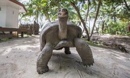 Aldabra gigantyczny tortoise w Seychelles Zdjęcia Royalty Free
