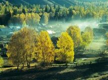 Aldea Baihaba, xinjiang, China del otoño foto de archivo libre de regalías