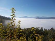 Aldea bajo la niebla fotografía de archivo libre de regalías