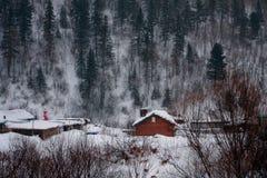 Aldea blanca de la nieve Fotografía de archivo libre de regalías