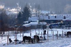 Aldea de la nieve foto de archivo libre de regalías