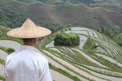 Aldeano asiático en terrazas asiáticas del arroz imagenes de archivo