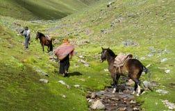 Aldeanos con los caballos en los Andes Imagen de archivo