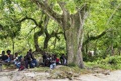 Aldeanos de Priumeri, Solomon Islands, sentándose debajo de árbol enorme en pueblo Fotografía de archivo